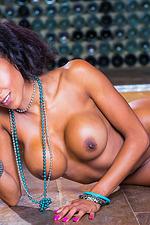 Alyssa Divine Sexy Round Tits 18
