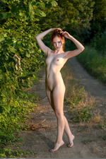 Redhead May In The Nature 10