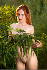 Redhead May In The Nature 16
