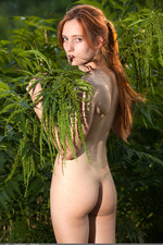 Redhead May In The Nature 20