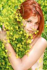 Sexy Redhead Violla Naked On A Flowery Field 08
