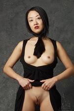 Tiger Lily - Black 06