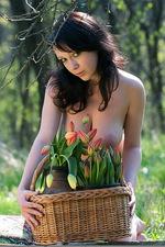 Dasha - Tulips 05