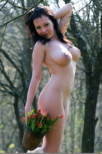 Dasha - Tulips 11
