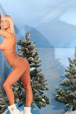 Christmas selection 11
