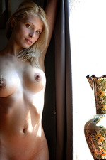 Roxio Intimate Window  09