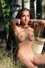 Sanjal - Birch Wood  01