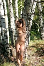 Sanjal - Birch Wood  06