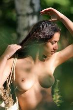 Sanjal - Birch Wood  14