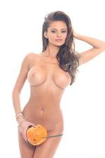 Pumpkins - Dana Harem  04