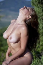 Aurelia in the nature 03