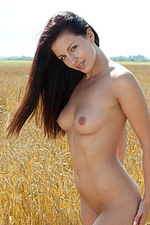 Darselle nude on a barley field 10
